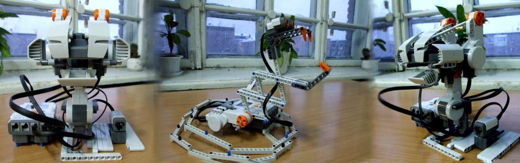 Модели роботов Эмоции, автор Олег Смирнов (МБОУ Гимназия №42) и модель Змея, автор Ольга Кирющенко (АлтГПА)